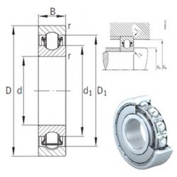 INA BXRE308-2Z needle roller bearings