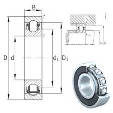 INA BXRE207-2RSR needle roller bearings
