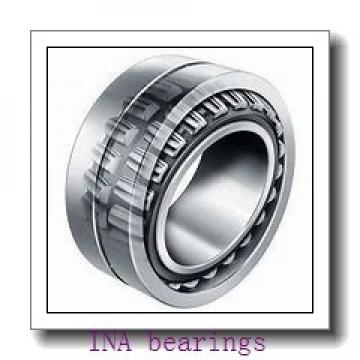 INA RSL183007-A cylindrical roller bearings