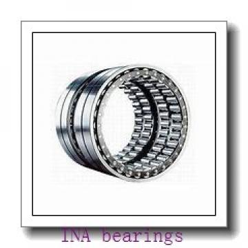 INA SL182913 cylindrical roller bearings